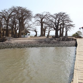 2011-04-15 Gambia, James Island which was a slave fort; the island has shrunk to one fifth its original size due to erosion. To the left is the little fort on Kunta Kinte Island in the Gambia River. it was originally established by the Duchy of Courland a