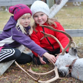 2011-09-18 Norway Kasrajok Sami country. The children see reindeer butchering as a normal part of life.