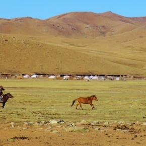 2011-09-22 Mongolia Ulan Bator - Mongolian herder chasing his pony with a lasso