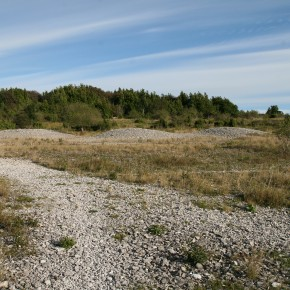 2010-09-05 Sweden, Stora Kalsö  - an lovely island full of fossil coral reefs, limestone and archaeology. Remains of ancient stone mounds are seen up ahead.