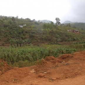 2011-04-13 Sierra Leone, Freetown - the scene of hills and agriculture along the road outside of the city