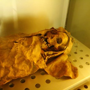 Guanche mummies dating back to about 1000 years ago are kept in humidity controlled chambers in the museum