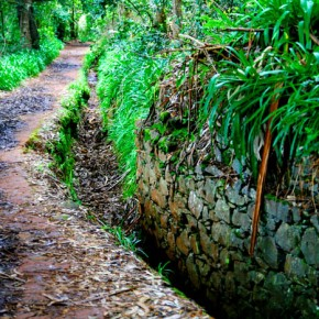 The Lebadas are extensive irrigation ditches built in the 19th century, now used for hiking